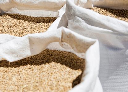 Cereales - Arbu Curados